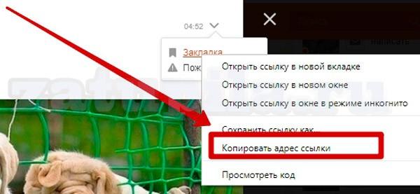 id-в-одноклассниках-11