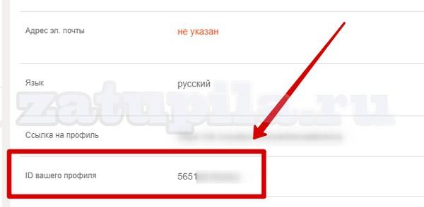 id-в-одноклассниках-2