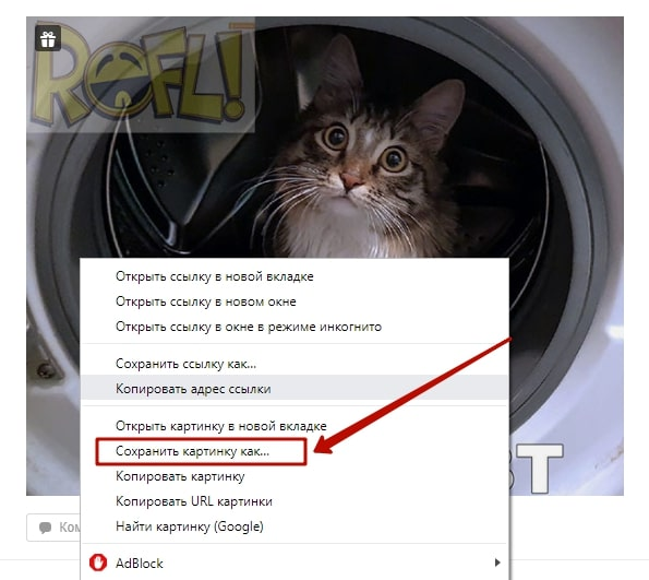 Как скачать фото с Одноклассников на компьютер или телефон 1-min