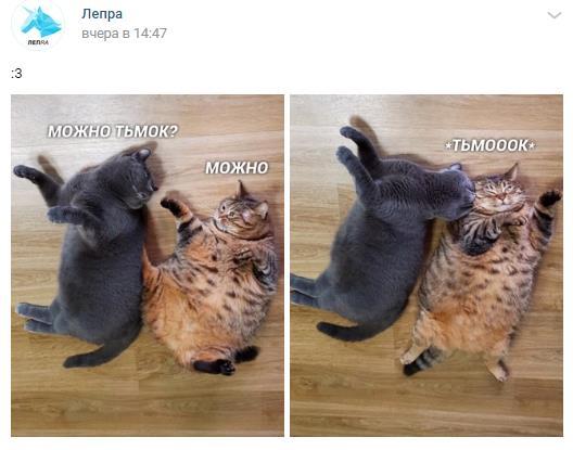 Думаете-ВКонтакте-много-рекламы-Скоро-для-нее-появиться-еще-и-специальный-раздел 2